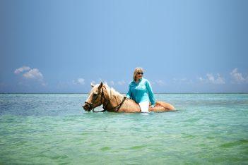 Martha Stewart escursioni Msc Crociere